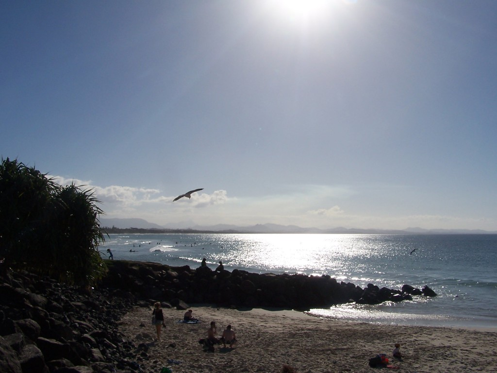 Soaring Seagull Silhouette at 5PM Byron Bay, NSW: f/5.6; 1/1500sec