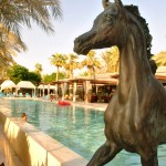 Desert Palm Resort: f/6.3; 1/160sec; ISO-100