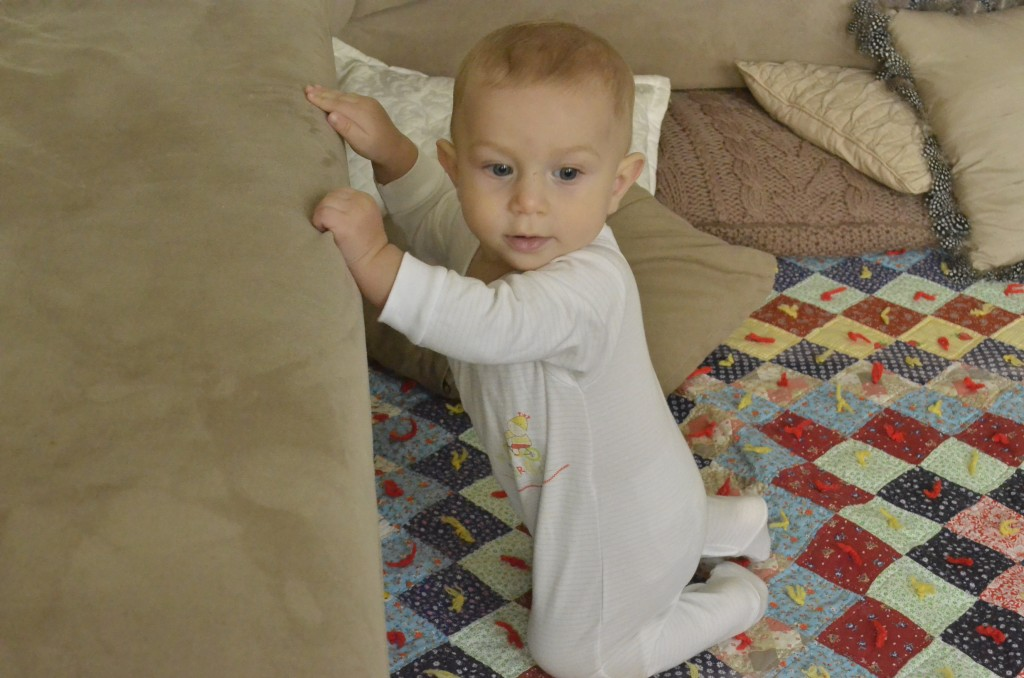 At seven and a half months Kingsley is launching himself up by using furniture